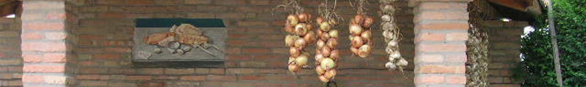 aglio e cipolla in essicazione